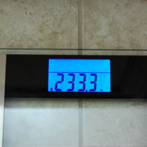 233.3 pounds